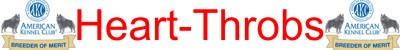 Heart-Throbs Schipperkes